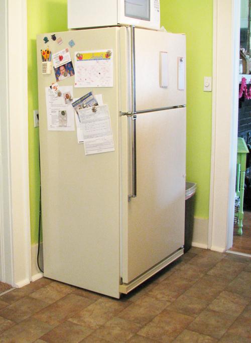 Kitchen icky fridge2
